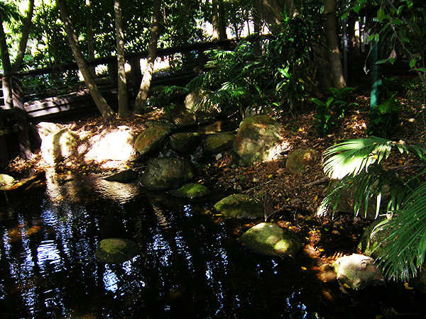 southbank-rainforest-walk,brisbane,travel