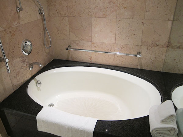 caesars-palace-bath,las vegas, travel