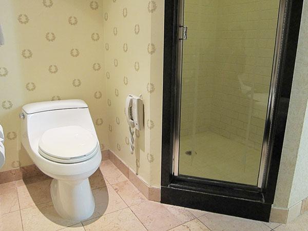 caesars-palace-shower,las vegas,travel