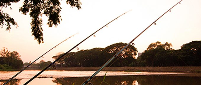 Top 3 Fishing Spots in Sydney