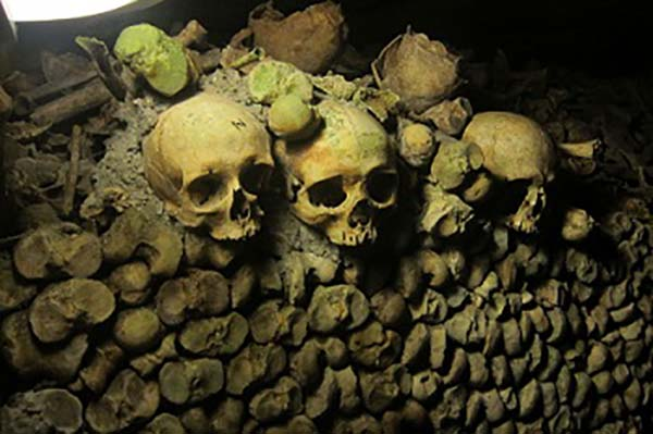 catacombs, paris,travel