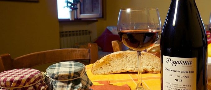 Chianti Wine Road: Tuscan Villas, Towns and Landscapes