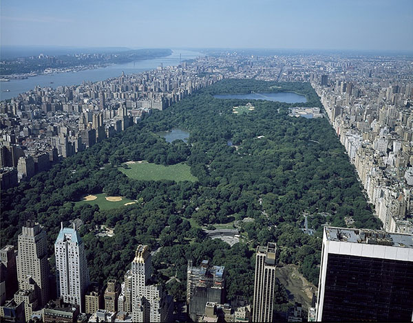 central-park, new-york, usa, travel