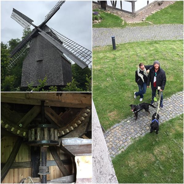 bielefeld-farmhouse-museum-windmill